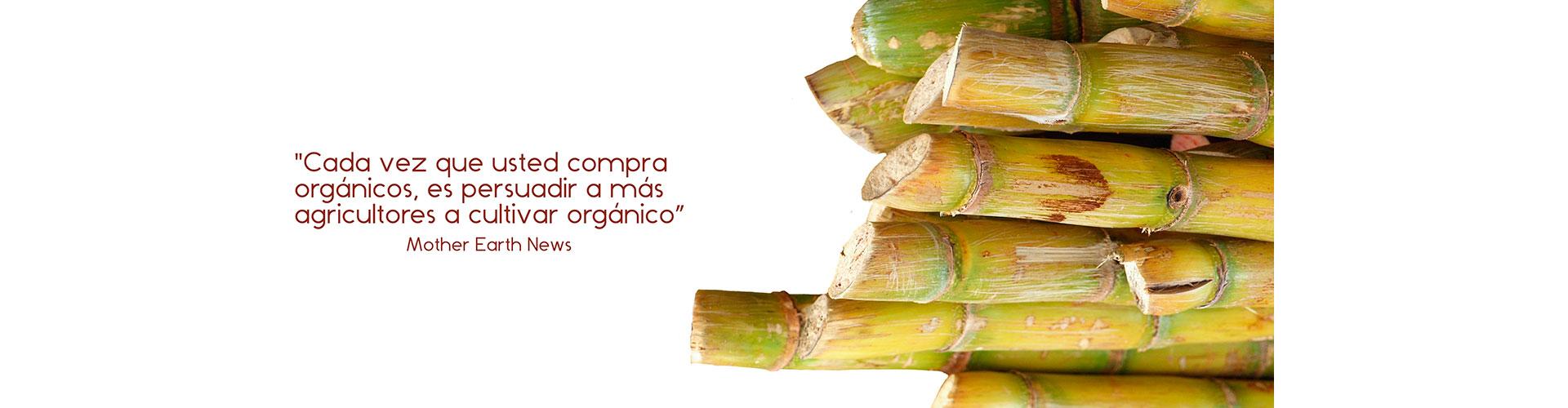Ecorgánicos de Colombia - Organic food - Alimentos orgánicos